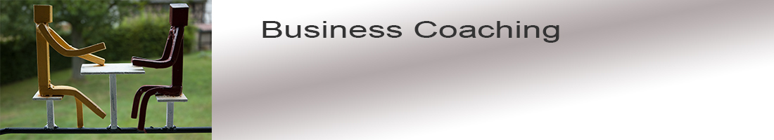 BusinessCoaching